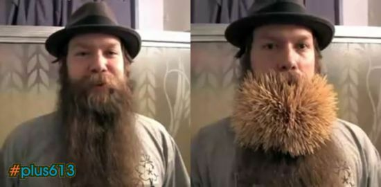 2222 toothpicks in a beard