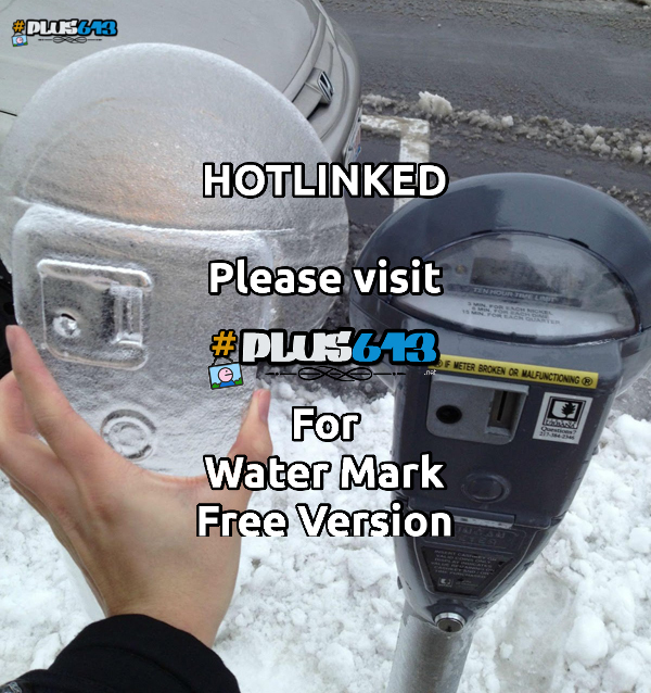 Parking meter ice mold