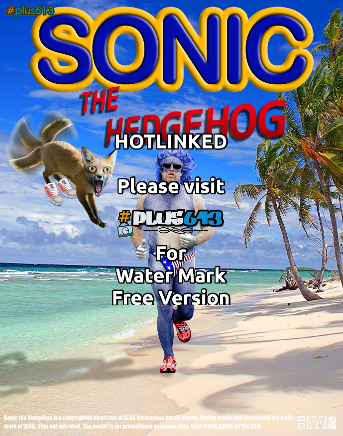 sonic the WTF??
