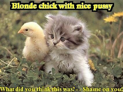 Blonde Chick With Nice Pussy