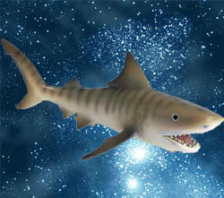 the dreaded space shark...
