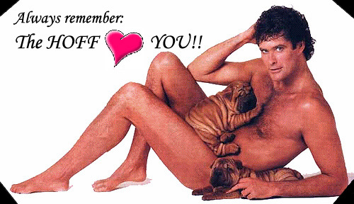 Hasslehoff loves you
