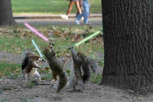 may the nuts be witcha!