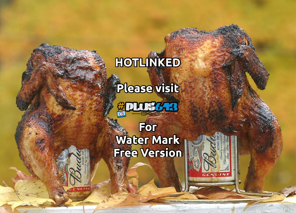 mmm chickens and beer