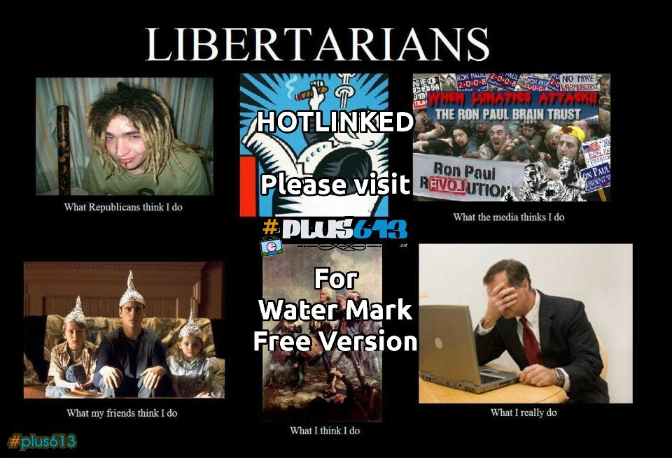 Libertarian What I actually do.
