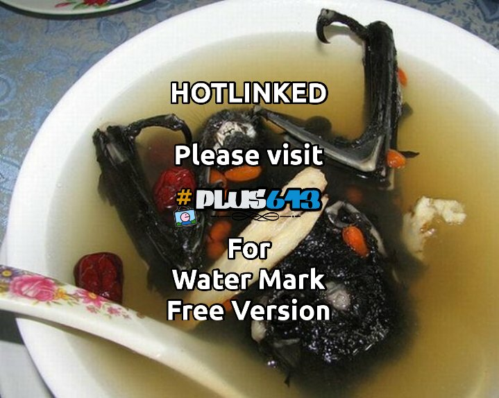 CARE FOR SOME BAT SOUP?