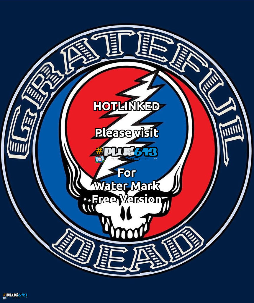 Steal Your Face Logo